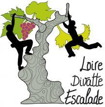 logo LOIRE-DIVATTE ESCALADE