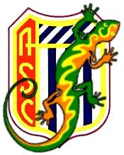 logo A.S.C. CHEVIGNY ST SAUVEUR